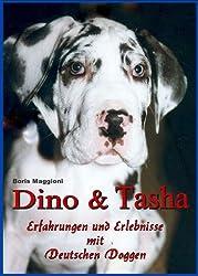 Dino & Tasha - Erlebnisse und Erfahrungen mit Deutschen Doggen