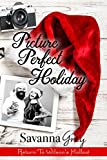 Picture Perfect Holiday (Wilson's Hollow Book 2)