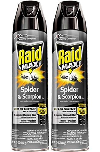 Raid Max Max Spider & Scorpion Killer - 12 oz - 2 pk