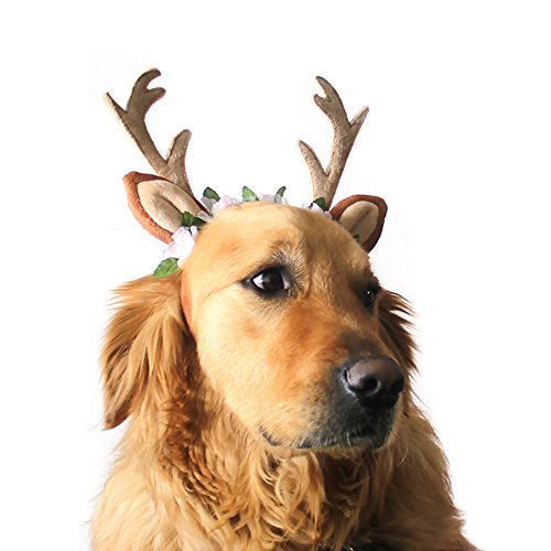 Pevor Pet Christmas Antlers Hat Cap - Elk Antlers Horn Shape Hair Hoop with Silk Flower Decor, Halloween Christmas Holiday Cosplay Reindeer Head Hoop Hair Accessories for Dogs, Cats (L) -