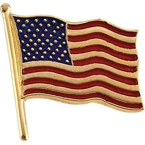 Lapel Pin Yellow Gold 14k - Bonyak Jewelry 14k Yellow Gold 14.5x14 mm American Flag Lapel Pin