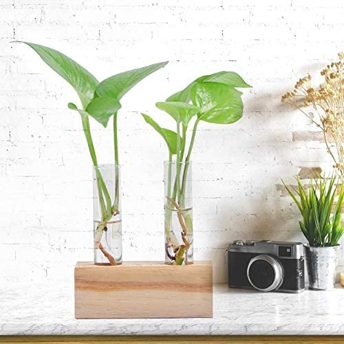 Bulb Ball Shaped Glass Hanging Plant Terrarium Flower Vase Wall Wedding Decor DX