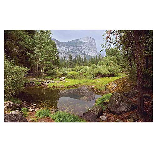 3D Floor/Wall Sticker Removable,Yosemite,Small Spring Forest Distant Mountain Picture of Yosemite National Park Landscape Print,Green,for Living Room Bathroom Decoration,35.4x23.6 ()