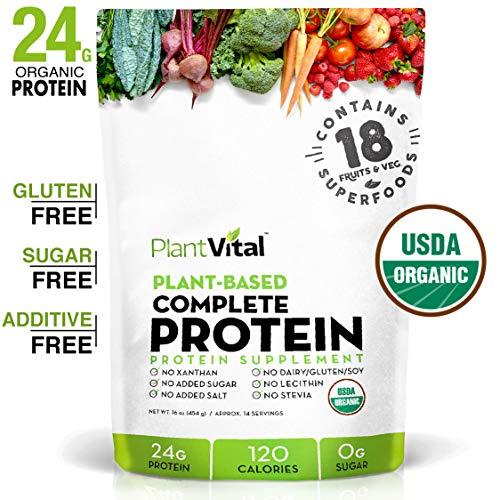 New! Plant Based Protein Powder w 18 SUPERFOODS, Veggies & Probiotics: Kale, Beets, Spirulina & More. Vegan, All BCAA's, Organic, Non-GMO, Gluten Free. 16oz (Carb Drink Power Mix)