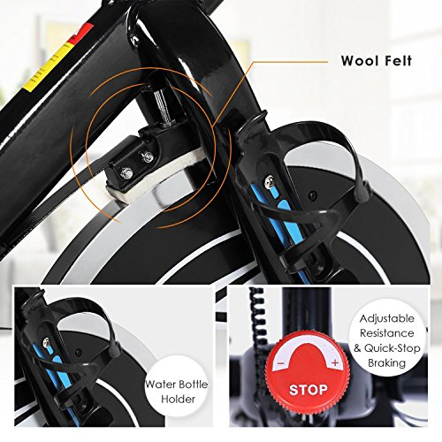 Indoor Fitness Exercise Bike Stationary Bike Spin Bike with LCD Screen Belt Drive Cycling Bike Trainer For Workout & Home, Black