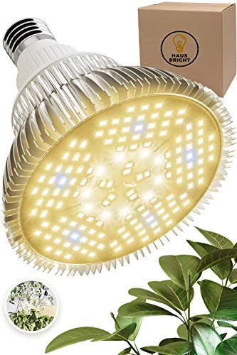 100W LED Grow Light Bulb - Warm White Full Spectrum Plant Light for Indoor Plants, Garden, Aquarium, Vegetables, Greenhouse & Hydroponic Growing by Haus Bright (100W Warm White)