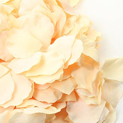 Review Koyal Wholesale Silk Rose