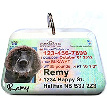 Pet Supplies : Canada driver license Ontario Personalized