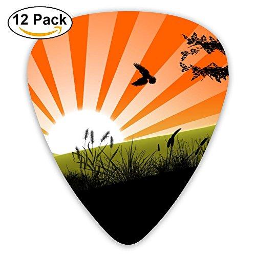 (12-pack Fashion Classic Electric Guitar Picks Plectrums Sunrise Birds Grass Instrument Standard Bass)