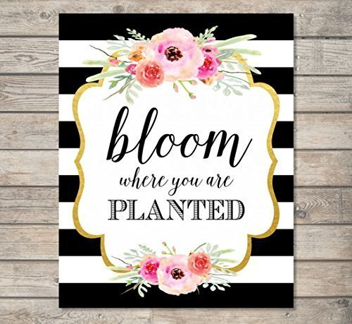 Blooms Stripe - Bloom Where You Are Planted - Art Print, Inspirational Art Print, Typography Wall Art, Unframed Print, 8