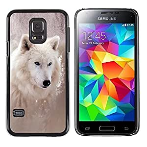 Be Good Phone Accessory // Hard Shell Protective Cover Case for Samsung Galaxy S5 Mini, SM-G800, NOT S5 REGULAR! // Cool Winter Wolf