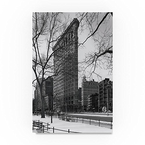 Trademark Fine Art Flat Iron Building by Chris Bliss, 30x47-Inch Canvas Wall Art (Bliss Wall Art)