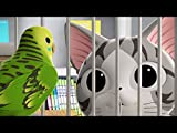 Chi meets a parakeet