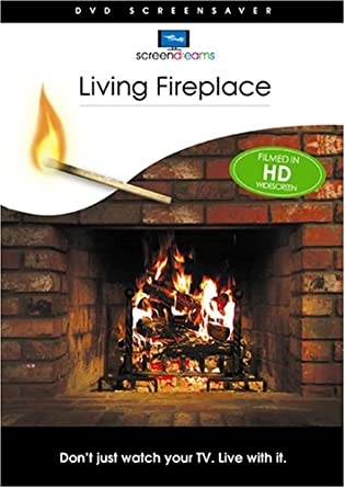 Amazon.com: Living Fireplace DVD: Stephen D. Spivak: Movies & TV