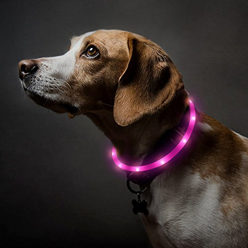 BSEEN (TM LED Dog Collar, USB Rechargeable Light up Safety Pet Collar, Good for Small, Medium and Large Dogs(Pink) -