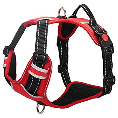 Babyltrl Dog Harness No Pull & No-Choke Adjustable Pet Harness with Dog Collar Reflective Oxford Comfortable Vest Easy Control for Large Dogs