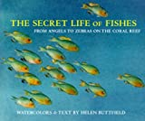 The Secret Life of Fishes, Helen Buttfield, 0810939339