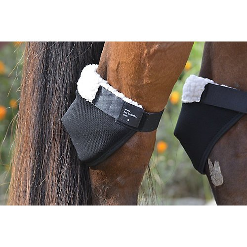 Most bought Horse Boots