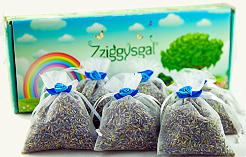 Zziggysgal 6 French Lavender Sachets in a Beautiful Keepsake Box (White) by zziggysgal