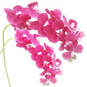 "cn-Knight Artificial Flower 2pcs 28"" Long Stem Butterfly Orchid Big Size Lifelike Phalaenopsis Real Touch Moth Orchid for Wedding Bridal Home Décor Office Baby Shower Party Centerpiece(Deep Pink) 46"
