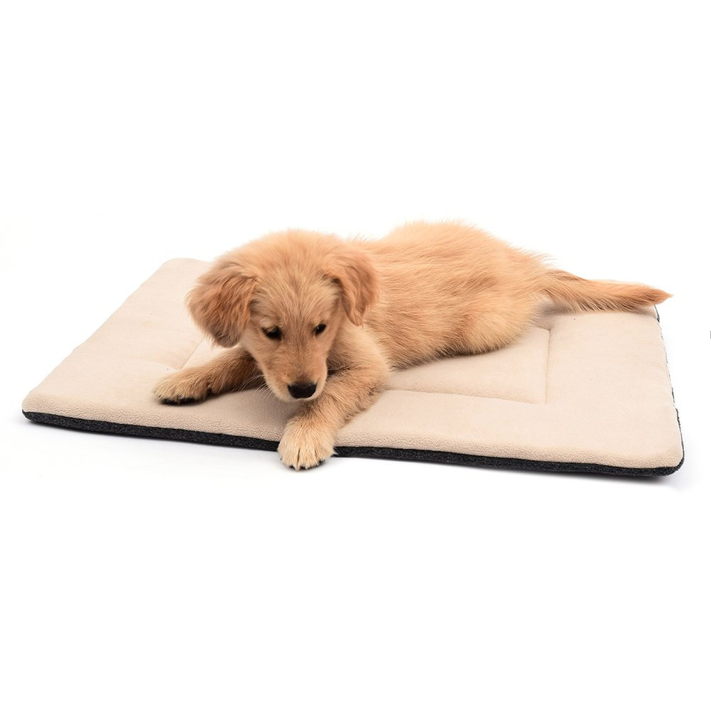 DERICOR Dog Bed Crate Pad 42''