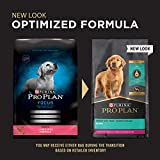 Purina Pro Plan Dry Puppy Food, FOCUS Lamb & Rice
