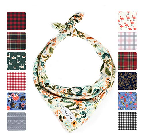 Lucy & Co. Dog Bandana - Designer Puppy Accessory for Boy and Girl Dogs - Includes 1 Limited Edition Print Bandana (Small, Mia)