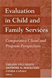 Evaluation in Child and Family Services : Comparative Client and Program Perspectives, , 0202307239