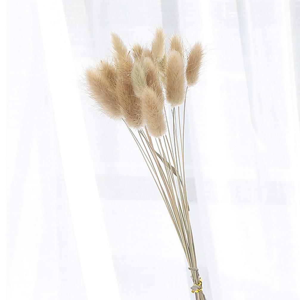 VOSAREA 30pcs Naturales Pampas secas Boda ichu de Flores para la Boda decoraci/ón de jard/ín de casa