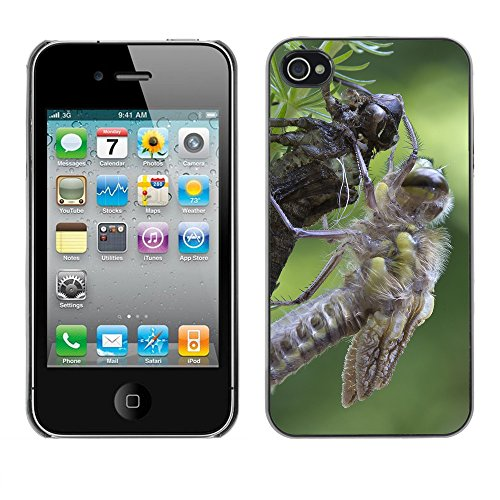 Premio Sottile Slim Cassa Custodia Case Cover Shell // F00013403 insecte // Apple iPhone 4 4S 4G