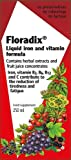 Floradix Liquid Iron & Vitamin Formula - 8.5oz  + Flora Organic Apple Cider Vinegar Shot 3oz Combo Bonus Pack