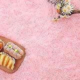 Noahas Luxury Fluffy Rugs Ultra Soft Shag Rug for