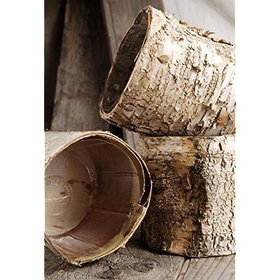 "Richland Birch Bark Planter 4.75"" Pots with Plastic Liner: Home & Kitchen"