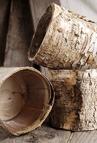 birch pots - 3