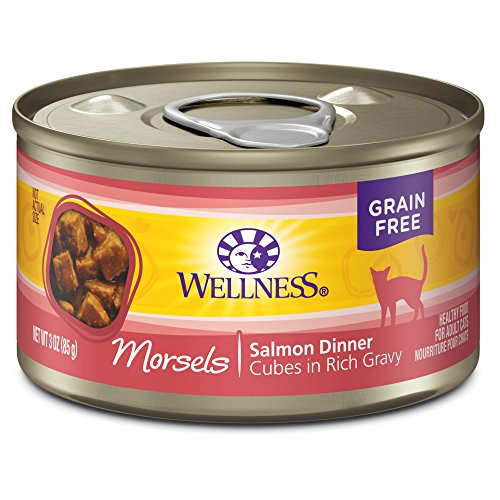 Wellness Complete Health Natural Grain Free Wet Canned Cat Food, Morsels Salmon Dinner, 3-Ounce Can (Pack of (Wellness Adult Salmon)