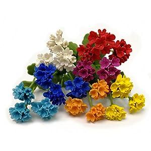 The Best Buy Set of 7 Dollhouse Miniature Fariy Garden Blank Colorful Geranium Flower 71