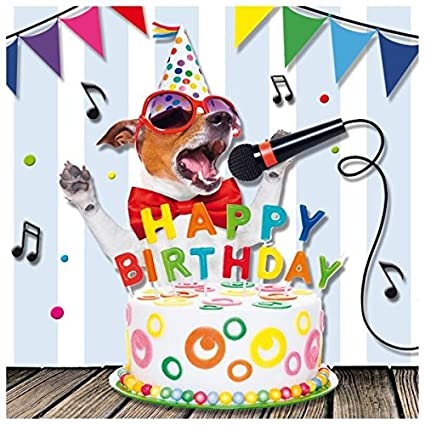 Amazon Susy Card 40010625 Birthday Singing Dog 15 Cm X 02