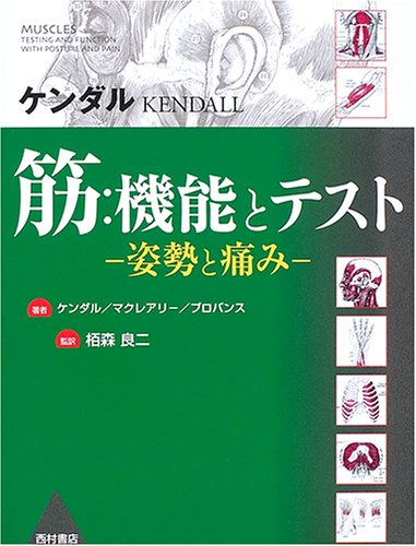 Pain and posture - and test function: muscle (2006) ISBN: 4890133380 [Japanese Import]