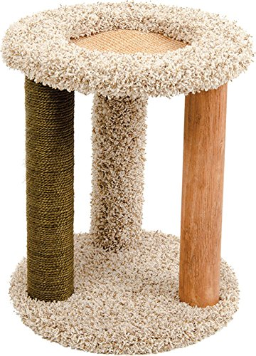 - WARE MFG. INC. DOG/CAT Kitty Carpet Playground-N-Lounge Natural 16X16X20 INCH