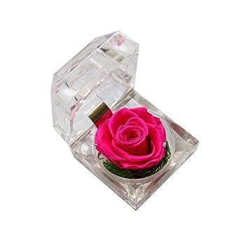 Ruiting Caja de Anillo de Flor Eternelle Regalo de Boda San Valentín Rosa Eternelle Cajas Anillos Caja joyero: Amazon.es: Hogar