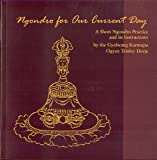 Ngondro for Our Current Day, Gyalwang Karmapa and Ogyen Trinley Dorje, 1934608165
