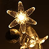 ZONYEO 20 LED Begonia Flowers Starfish String Lights Christmas Decorative Connectable Cherry Flower Decoration Novelty Light for Party, Patio, Chirstmas, Garden, Home and Garden