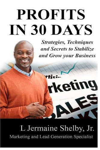 Read Online 30 Days to Profits: Strategies, Techniques and Secrets to Stabilize and Grow your Business pdf