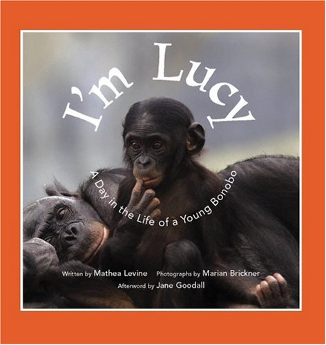 I'm Lucy: A Day in the Life of a Young Bonobo