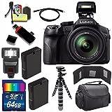 Cheap Panasonic Lumix DMC-FZ300 Digital Camera + Extra Battery + 64GB