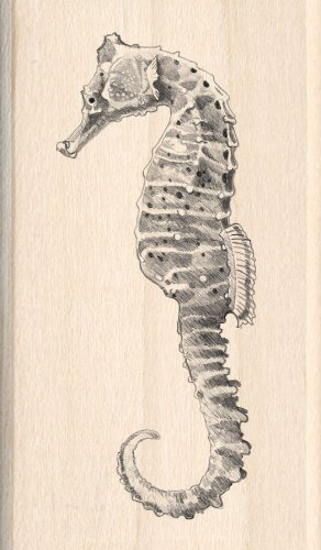 Seahorse Rubber Stamps