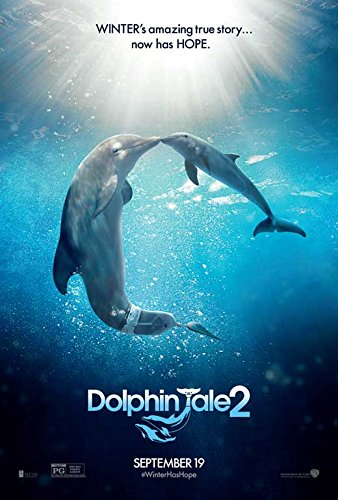 dolphin tale 2 movie - 8
