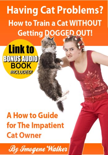 Having Cat Problems? - How to Train a Cat WITHOUT Getting DOGGED OUT!