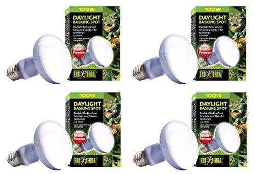 (Exo Terra Sun-Glo Basking Spot Lamp, 100-Watt/120-Volt (4 Pack))