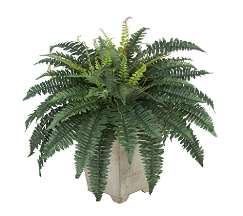 House of Silk Flowers Artificial Fern in Small White-Washed Wood Planter For Sale